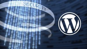 Securing your WordPress website - Eggbox Designs Ltd, web development comany in Portsmouth