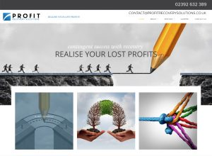 Website Designed, Profit Recovery Solutions Ltd, a Hampshire based Profit Recovery Company in the UK